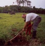 Riforestamento-con-atrezzo