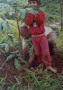 riforestamento